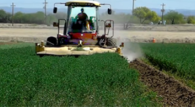 Labor Partnership farming